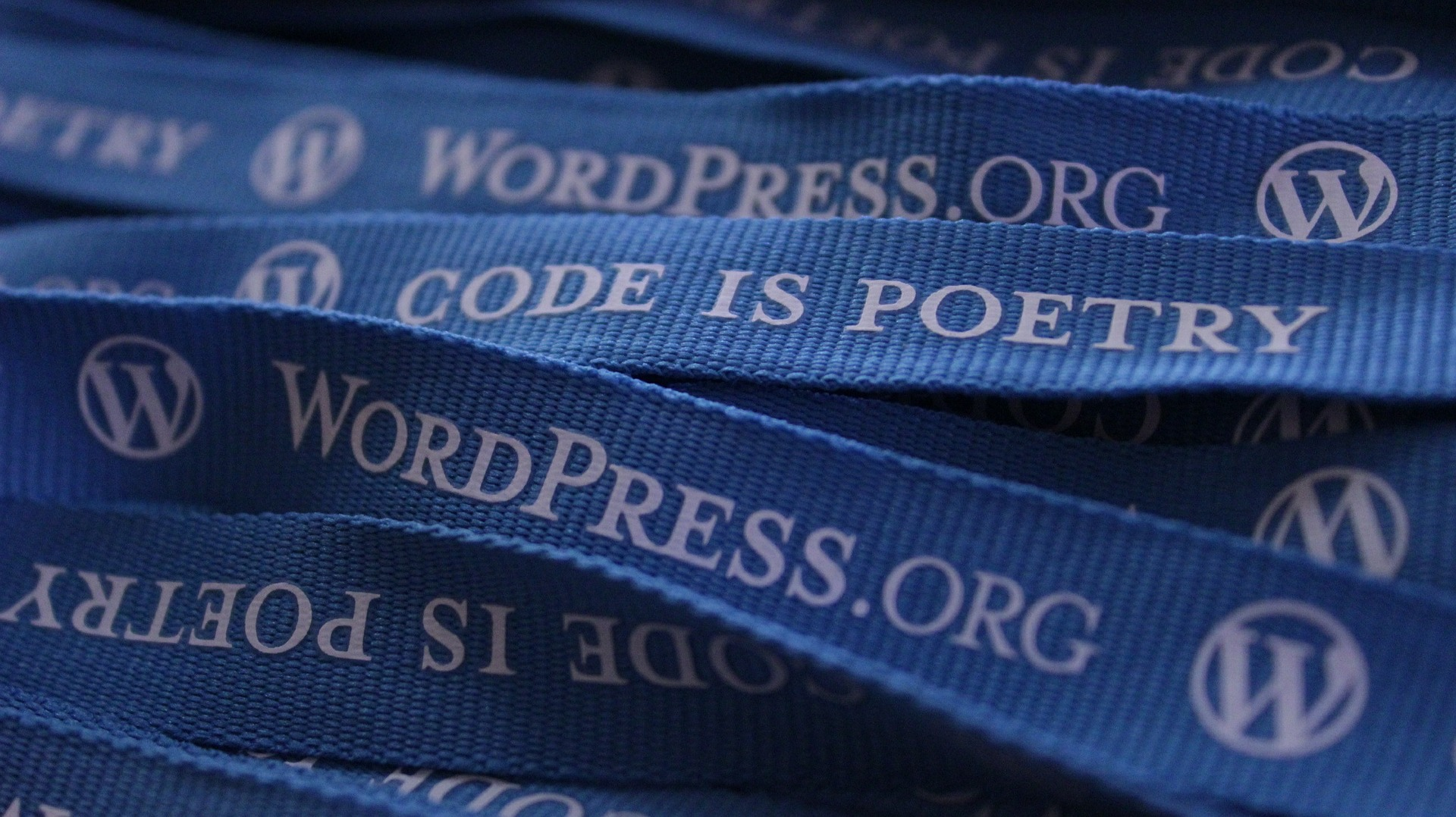 What is WordPress & Why You Should Be Using It